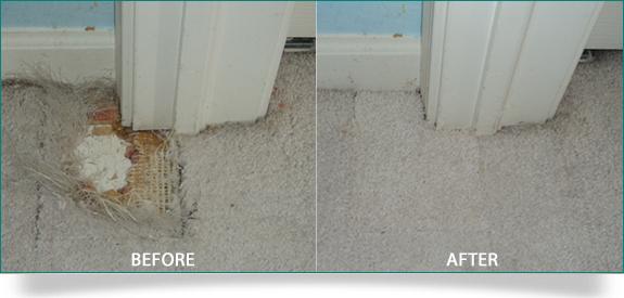 Carpet Repair Edmonton Meze Blog